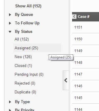 Left Navigation Case Count