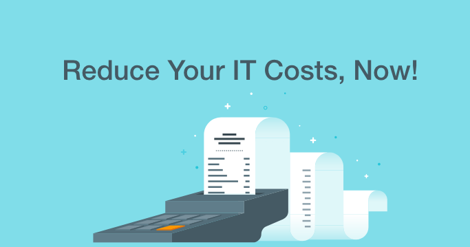 reduce-it-costs