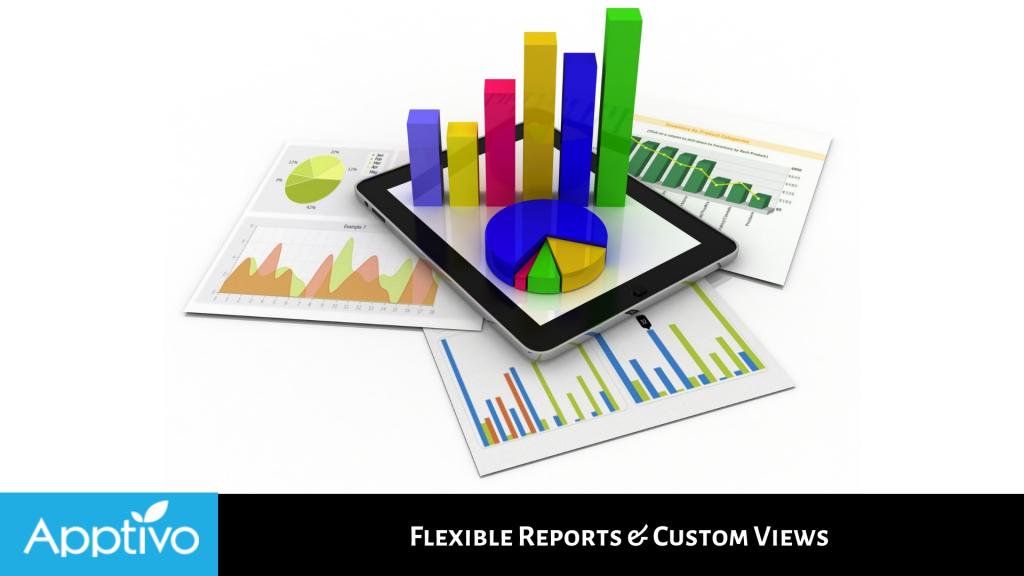 Flexible Reports & Custom Views