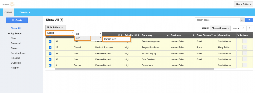 Introduced Export Feature in Customer Portal